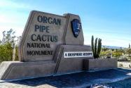 Organ Pipe Cactus NM AZ