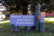 Point Reyes NS CA