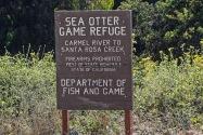 Sea Otter Refuge, CA