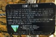 Tower Ruin Site NM