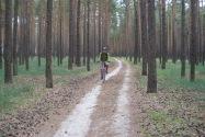15-Bike